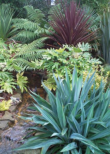garden plant designs
