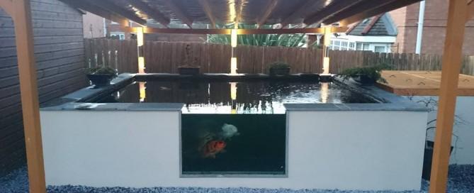 adrian pond