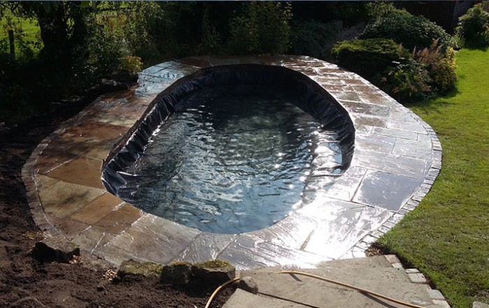 Blog ponds northwest for Pool koi manchester