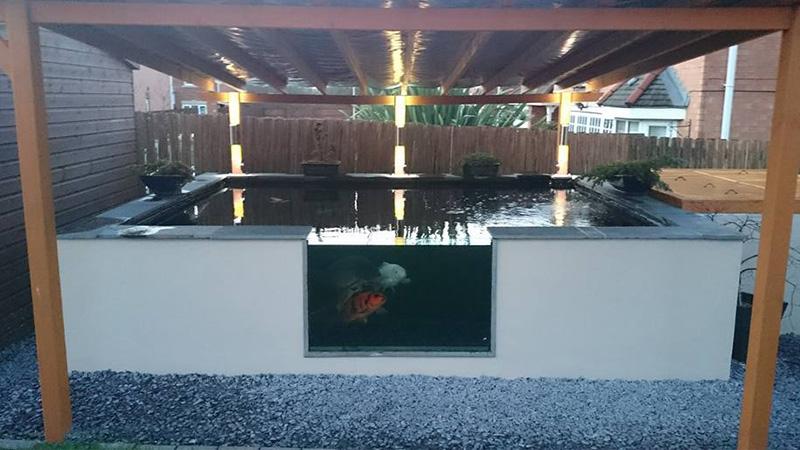 pond with glass window
