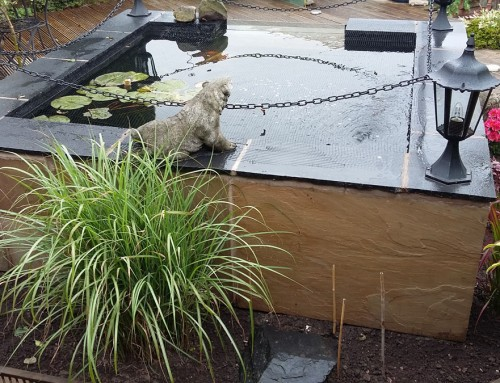 Koi pond construction Worsley