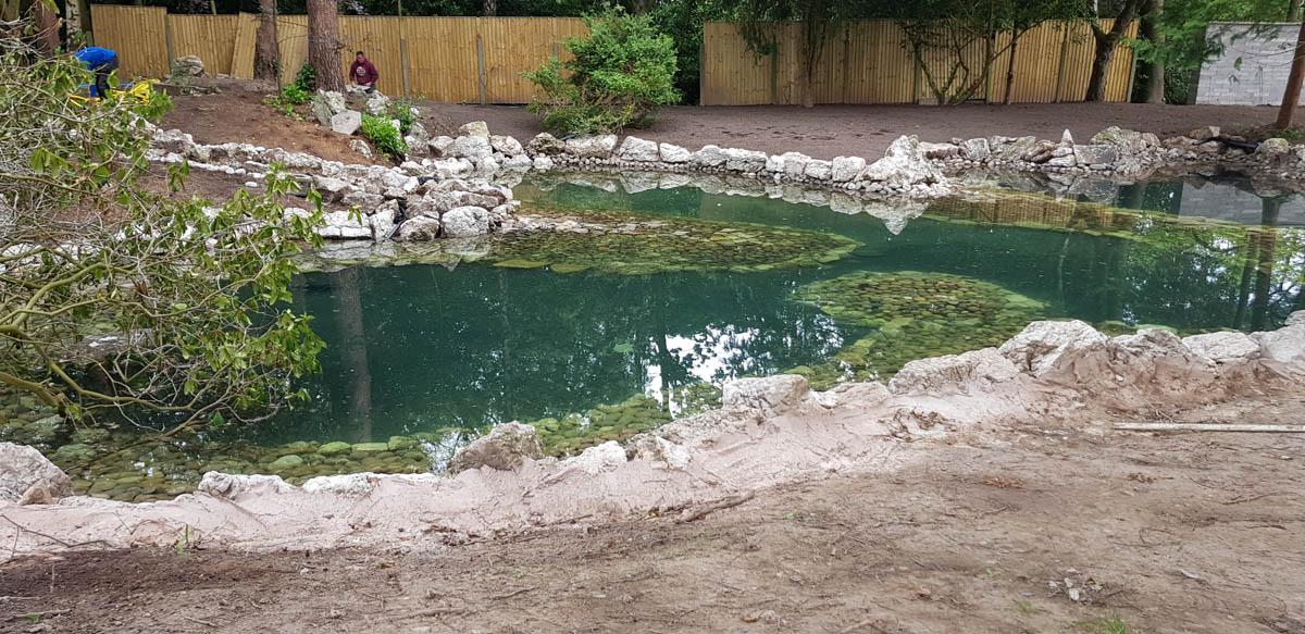Natural Ponds Cheshire