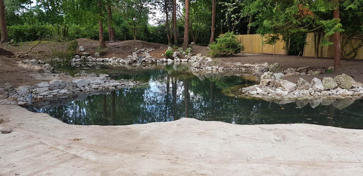 Natural Pond Cheshire